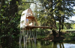 treehouse solling