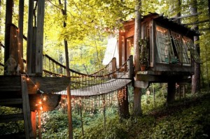 Secluded-Intown-Treehouse4